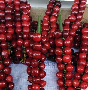 cherries ferghana