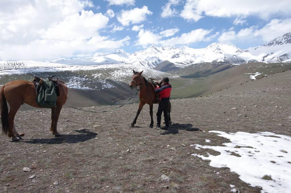 Pays des randos à cheval