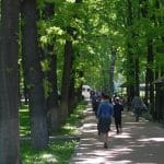 sous les arbres à Bishkek