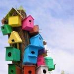niche a oiseaux