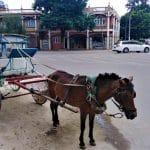 calèche de Pyin Oo Lwin Voyage