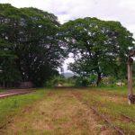 Voyage chemin de fer Hsipaw