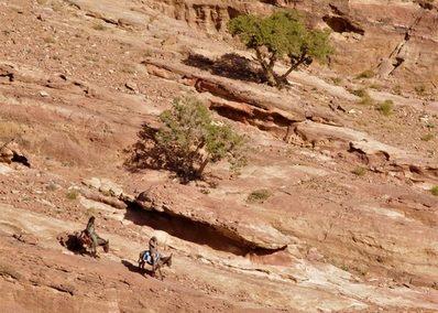 le ''desert de Pétra'' Jerusalem et Petra