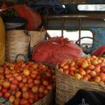 chargement de tomates Voyage en birmanie