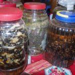 grenouille et autre joyeusetées en bocaux