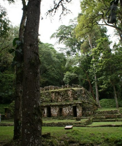 le site de Yaxchilan au Mexique