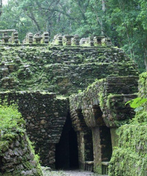 le site de Yaxchilan